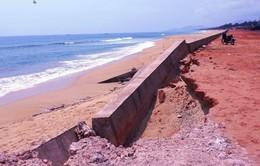 Bình Định công bố nguyên nhân sập kè bờ biển Tam Quan 80 tỷ