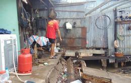 Cà Mau kiến nghị di dời khẩn cấp gần 360 hộ dân tránh sạt lở