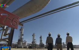 Iraq có thể là thành viên tiếp theo rời OPEC