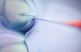 WHO thành lập ủy ban nghiên cứu việc chỉnh sửa gen