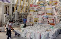 Năm 2018, dự kiến Việt Nam xuất khẩu 6,15 triệu tấn gạo, đạt kim ngạch 3,15 tỷ USD