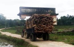 """Xe chở gỗ, """"khiêng"""" luôn cổng chào của làng là có thật"""