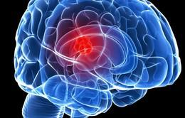 Não người có thể hoạt động nhiều giờ sau khi chết