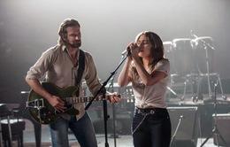 """""""A Star Is Born"""" sẽ quay trở lại màn ảnh Mỹ với phần âm nhạc hoàn toàn mới"""