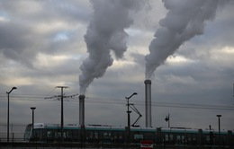 WHO: Ứng phó biến đổi khí hậu có thể cứu sống hàng triệu người