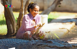 Một ngày ở trang trại cá sấu của cô Hai