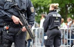 Italy và Đức phối hợp bắt giữ gần 200 đối tượng mafia