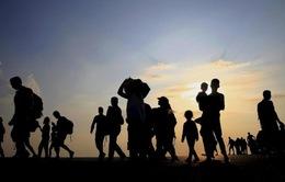 Jordan cho phép tiếp nhận viện trợ nhân đạo cho người tị nạn Syria