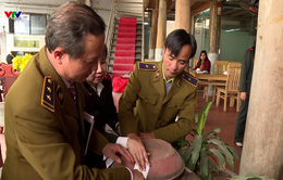Người Việt sản xuất và tiêu thụ 270 triệu lít rượu/năm