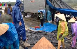 Thủy sản Tết Thừa Thiên - Huế được mùa, được giá