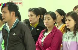 Hoãn xét xử vụ buộc thôi việc 12 giáo viên ở Phú Yên