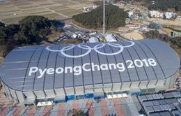 Olympic PyeongChang 2018: Tiếp tục gia tăng các ca nhiễm norovirus