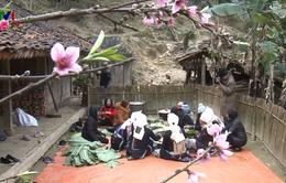 Sắc Xuân trên xóm người Dao