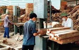Huyện Văn Yên (Yên Bái): Bước đột phá mới về phát triển kinh tế - xã hội