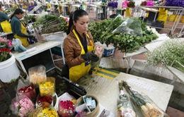 Valentine - Cơ hội việc làm cho lao động nghèo ở Colombia