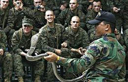 Thái Lan và Mỹ tập trận Hổ mang vàng