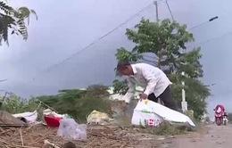 Việc tử tế: Người cựu binh làm đẹp xóm làng