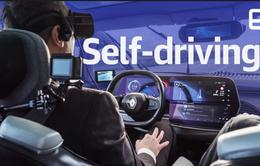 Trải nghiệm kính thực tế ảo kết hợp xe tự lái