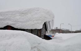 Tuyết dày bao phủ gây ảnh hưởng đến giao thông ở Nhật Bản
