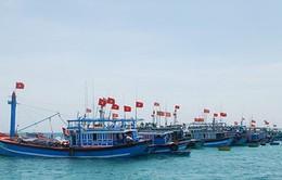 """Ngư dân Phú Yên mở cửa biển - Bắt đầu mùa khai thác """"có trách nhiệm"""""""