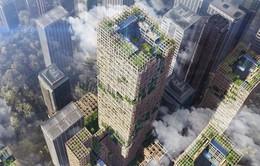 Nhật Bản sẽ xây tòa nhà chọc trời bằng gỗ cao nhất thế giới