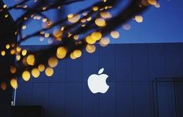 Apple là công ty sáng tạo nhất thế giới