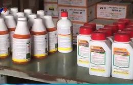 Ngộ độc thuốc diệt cỏ gia tăng đột biến dịp Tết