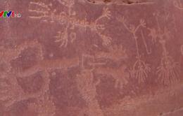 Phát hiện điêu khắc lạc đà 2000 năm tuổi