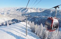 Thời tiết bất thường: Nhiệt độ giảm sâu ở Áo, New York nắng đột ngột