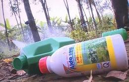 Người dân vô tư dùng thuốc diệt cỏ