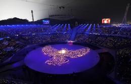 Olympic Pyeongchang - Thế vận hội mang những thông điệp ý nghĩa