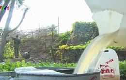 Ra Giêng, quần đảo Hải Tặc sẽ thiếu nước sinh hoạt