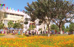 Lễ hội mùa Xuân các dân tộc tỉnh Gia Lai năm 2018