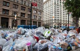New York là thành phố kém vệ sinh nhất nước Mỹ