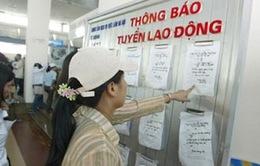 Quảng Ngãi có nhu cầu tuyển dụng hơn 15.000 lao động