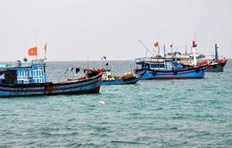 Tước giấy phép 3 tàu cá vi phạm vùng biển nước ngoài