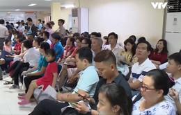 TP.HCM: Hồ sơ làm thủ tục xuất nhập cảnh tăng đột biến