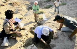 Iraq phát hiện hàng chục hiện vật cổ sau trận mưa lớn