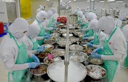 Hà Lan đề nghị làm rõ một số vấn đề chứng nhận khai thác thủy sản của Việt Nam