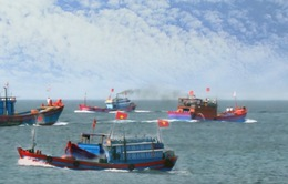 Hàng trăm tàu cá của ngư dân Lý Sơn vươn khơi