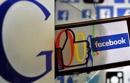 Lợi nhuận từ quảng cáo trên Google, Facebook phải nộp thuế