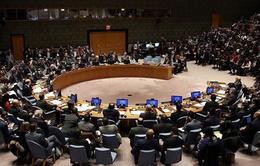 Nga phủ quyết nghị quyết của HĐBA LHQ lên án Iran