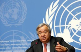 LHQ, EU kêu gọi triển khai lệnh ngừng bắn tại Syria