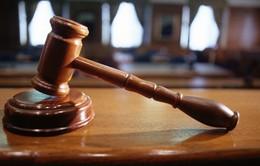 Hạ viện Mỹ thông qua dự luật phạt các trang web mại dâm