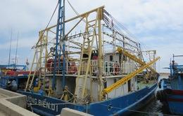 """""""Quá tải cảng cá"""" - Bức xúc của ngư dân trong mùa khai thác"""