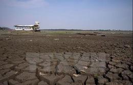 Sự ấm lên của Trái Đất làm đảo lộn thời tiết các châu lục
