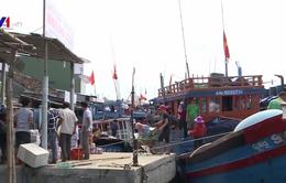 Ngư dân Quảng Ngãi mở biển, ra ngư trường Hoàng Sa