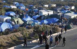 """Pháp mạnh tay với """"vấn nạn Calais"""""""
