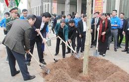 Văn phòng Quốc hội tiếp nhận và trồng cây hoa ban