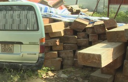 Gia tăng tình trạng ô tô hết niên hạn sử dụng chở gỗ lậu